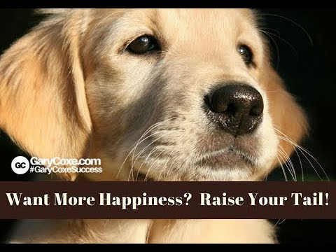 Want More Happiness?  Raise Your Tail!