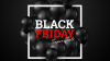 BLACK FRIDAY – Quit picking up chicken poop!